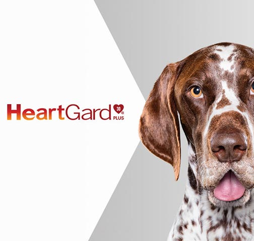 HeartGard product label